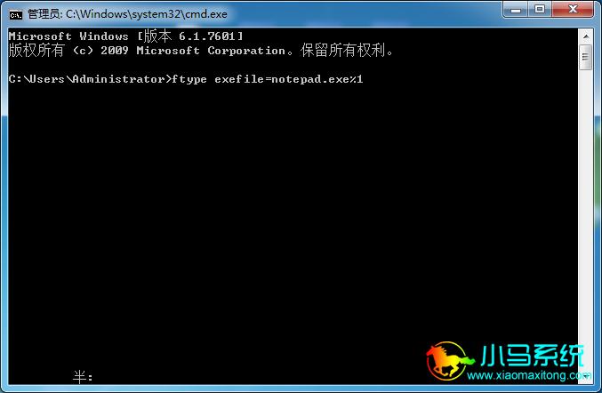 接着输入:ftype exefile=notepad.exe %1